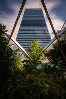 Roof Garden, Canary Wharf Crossrail