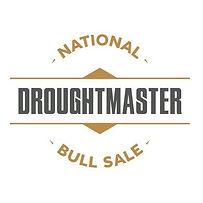 NEW DN logo.jpg