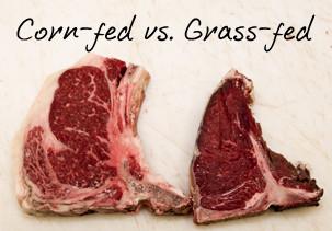 Tesi di laurea triennale sul consumo di carne Grassfed dei consumatori Lombardi.
