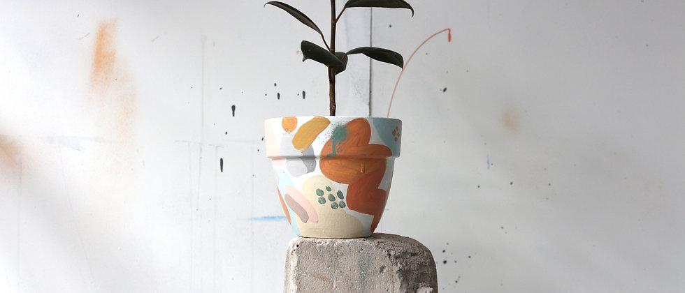 Pot Plant - Small