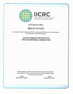 Microbial Remediation Certification