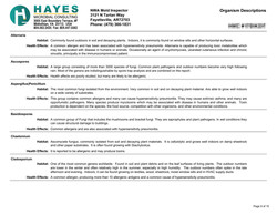 Clearance Report Page 9