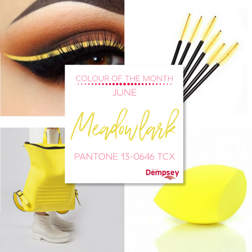 Colour of the Month for June - Meadowlark