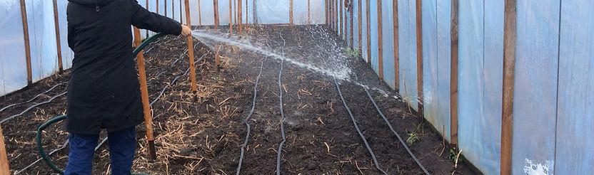 Подготовка почвы в теплице осенью.jpeg