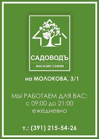 Плашка МОЛОКОВА, 3.jpg