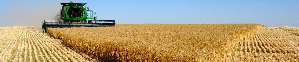Удобрения для сельхоз производителей