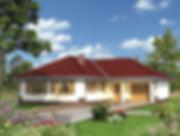 Строительство домов из блока и кирпича. Проект Т8
