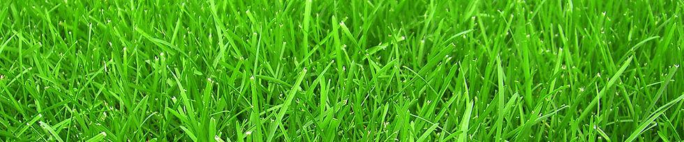 Удобрения для газонов