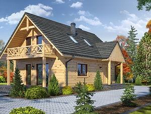 Строительство каркасных домов в Твери и Московской области. Проект 12