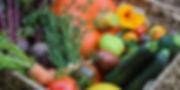 Схемы питания удобрениями растений