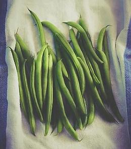 green-beans-1081933__340.webp