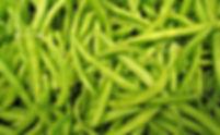 green-beans-1018624__340.jpg
