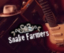 Snake Farmers Hat, mic Strat and Font co