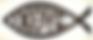 Ichthus symbol of Christianity
