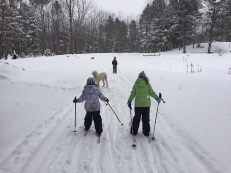 Snowshoe/Ski Maine Forest Yurts - Big Adventure - Durham