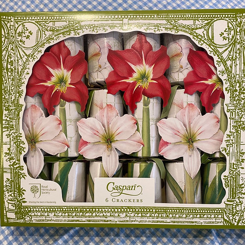 Caspari RHS Christmas at the Garden Crackers 6 pack