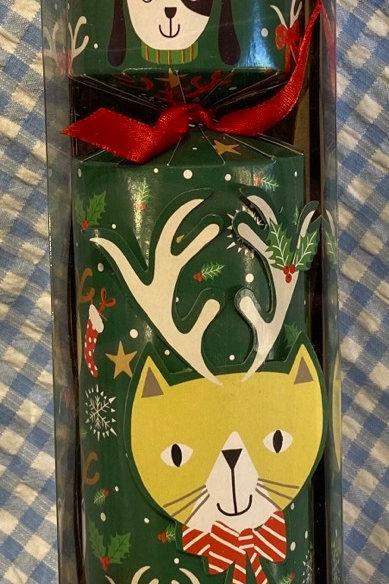 Caspari Pet Cracker Cat With Antlers
