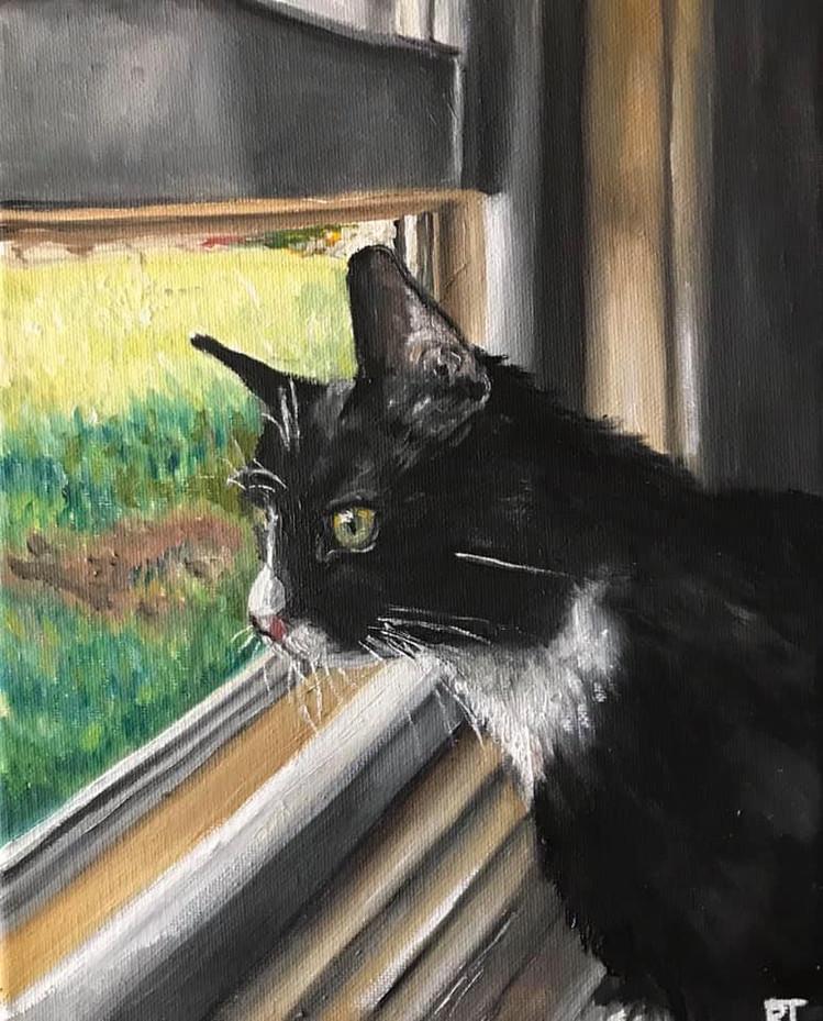 """""""Window Gazing"""""""