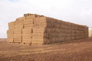 venta de paja, heno, alfalfa y forraje, ALPACAS DE PAJA