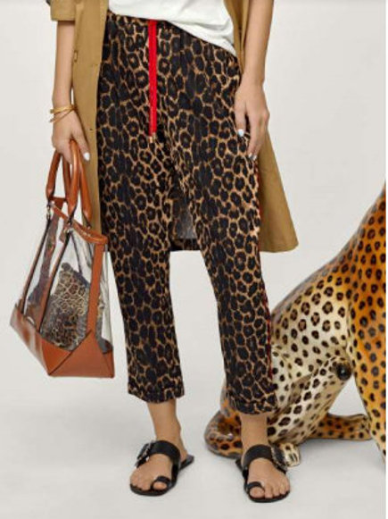 Joggin leopardo
