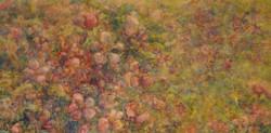 Spring Bloom 25x50