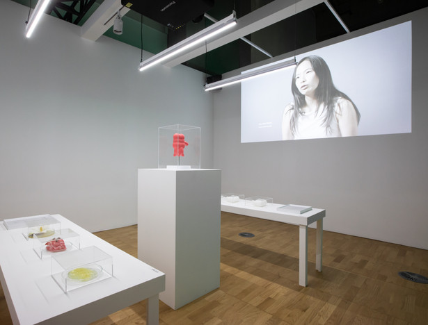 The Appendix Human, Paul Gong, 2019, ACC