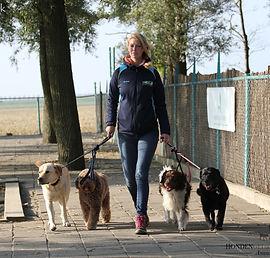 Irina Dogwalk uitlaat