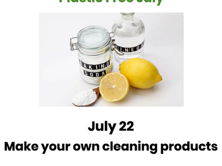 PFJ 2021 ~ Make your own cleaning products