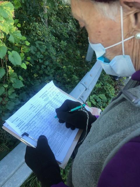 Recording the data