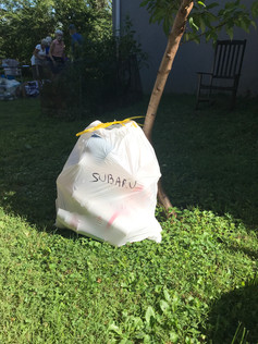 Straws, lids & cups to take to Subaru