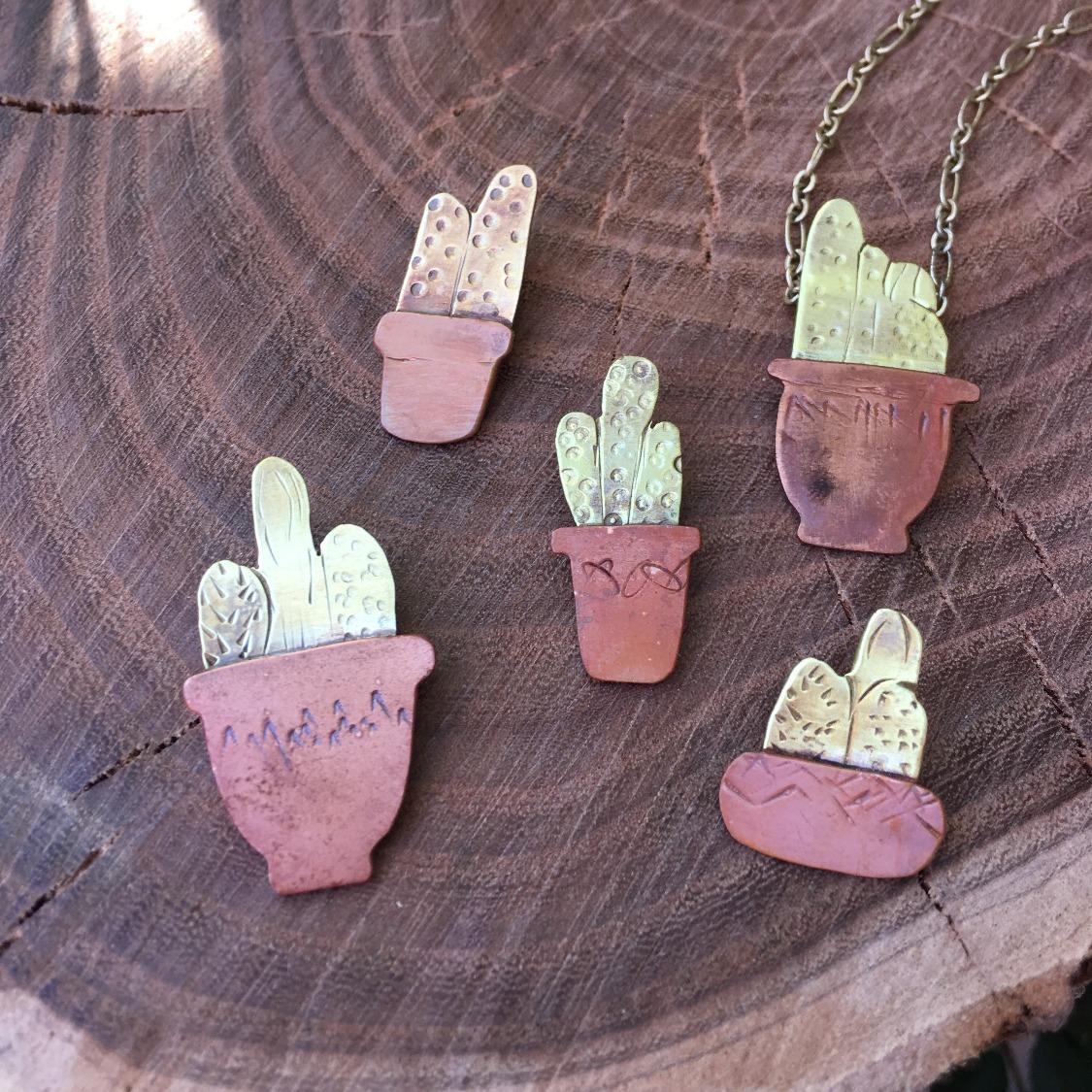 Cactus in a pots