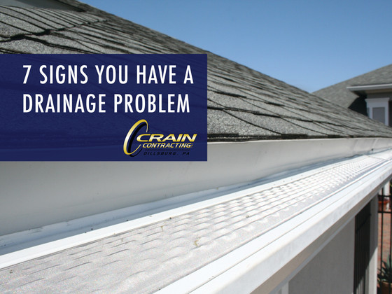 7 Signs You Have a Drainage Problem