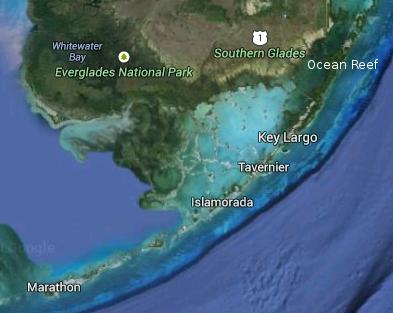 islamorada ocean reef key largo marathon tavernier