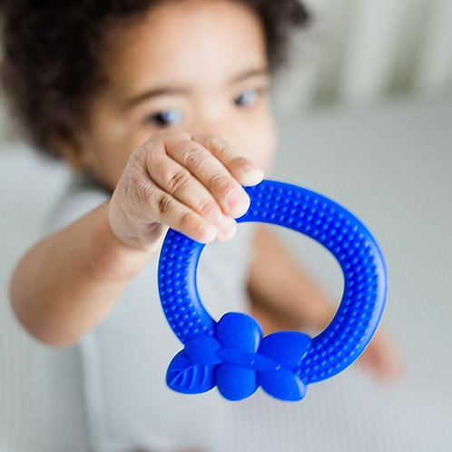 Blueberry Silicone Fruit Teether by Green Sprouts