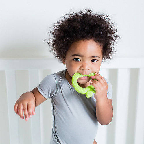 Apple Silicone Fruit Teether by Green Sprouts