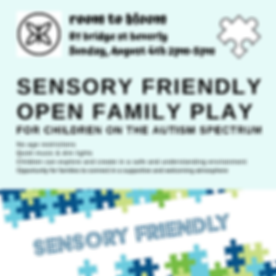 Sensory Friendly Open Family Play