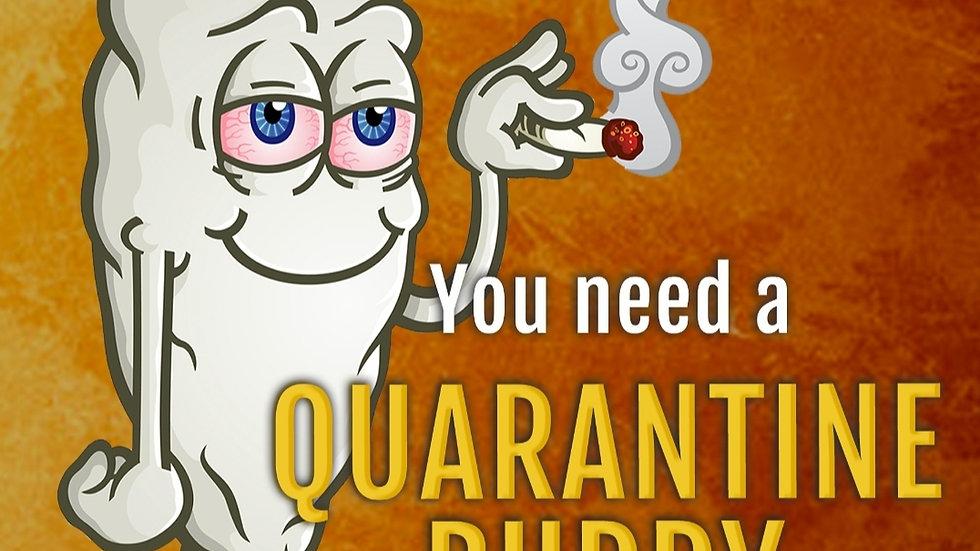 Elev8 seeds- Quarantine buddy