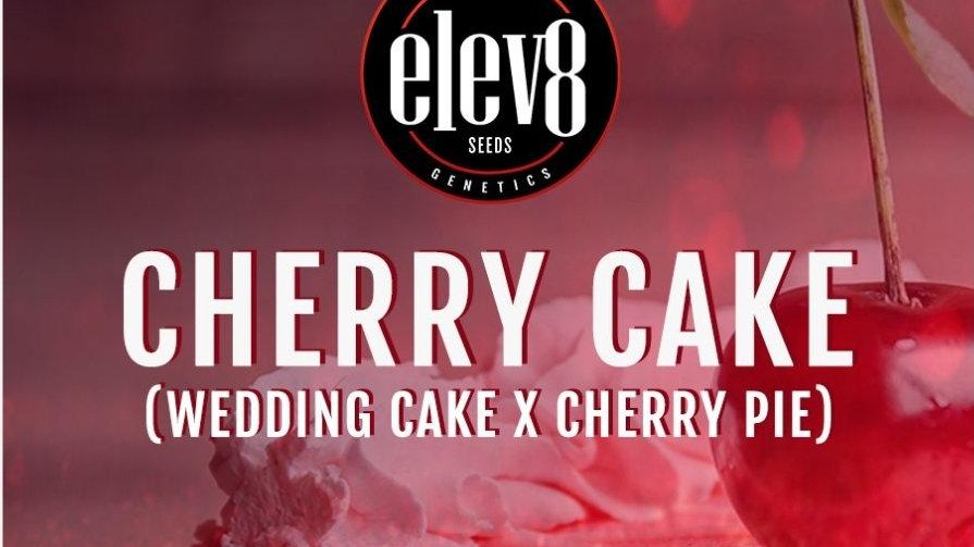 elev8 seeds- Cherry cake