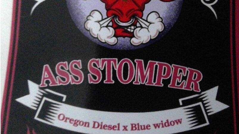 NWG Genetics- Ass Stomper Photo Reg 10 pack