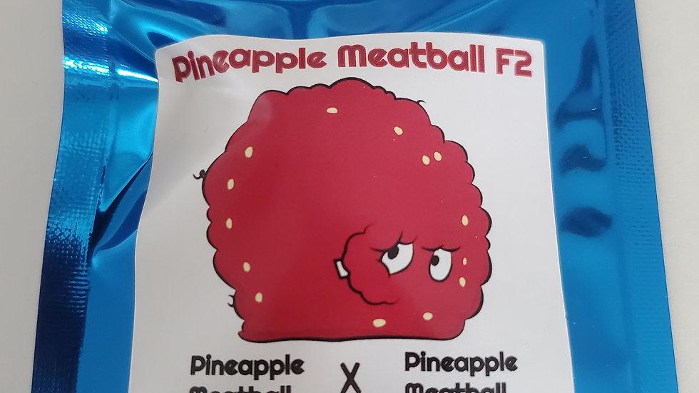 Terp fi3nd- Pineapple meatball f2 regs