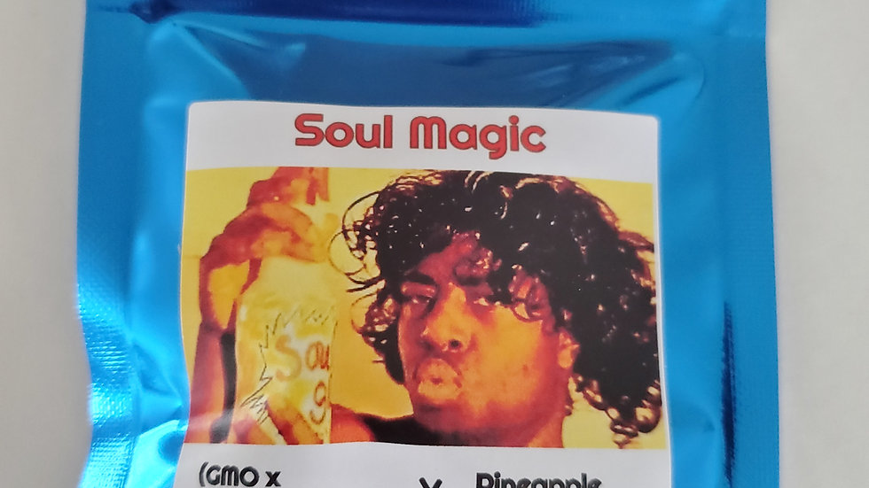 Terp fi3nd- Soul magic regs