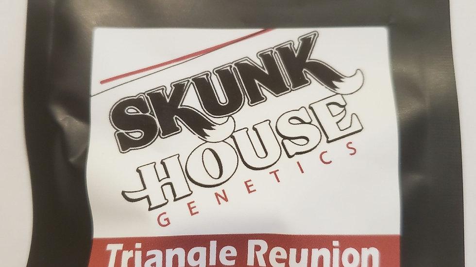Skunkhouse- Triangle reunion
