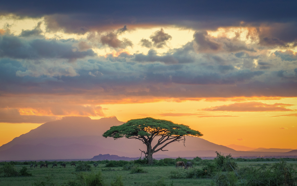 GailS- Kenya Sunset