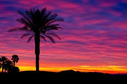 JeffF-Desert-Sunrise