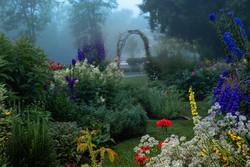 NeilM - Foggy Morning