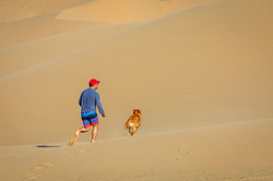 Don P Dune Dog Run