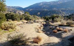 bbolduc_landscape 1