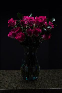 JeffF-1-Roses