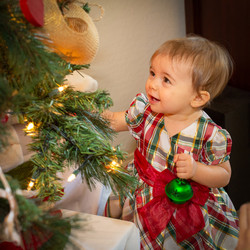 DianeA Christmas Tree 2