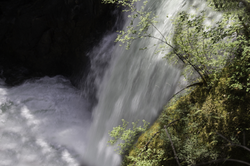 BettyT _ Qualicom Falls